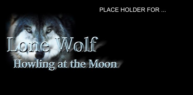 Song – Lone Wolf…Howling at the Moon
